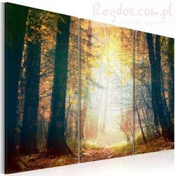 Obraz - Piękno jesieni - tryptyk