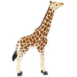 Młoda żyrafa ANIMAL PLANET