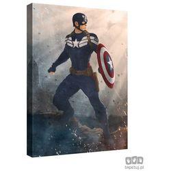 Obraz MARVEL Capitan America: The Winter Soldier PPD338