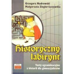 Historyczny labirynt (opr. miękka)