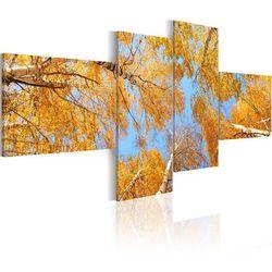 Obraz - Jesień w oczach krasnala
