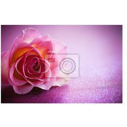 Naklejka Rose