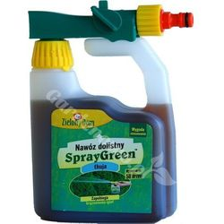 SPRAYGREEN DO THUI TUJI TUI 950ml ZIELONY DOM