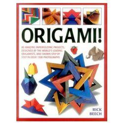 Origami Fun - Stanisław Skibiński [KSIĄŻKA] - kup online | eMAG.pl | 250x250