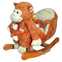 Bujak Małpka na biegunach