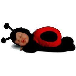 Śpiąca biedronka