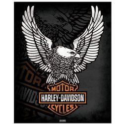 Harley Davidson (Eagle) - plakat
