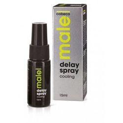 Cobeco Male Delay Spray Cooling Spray chłodzący i opóźniający orgazm 15ml