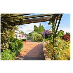 Fototapeta Piękny ogród w parku