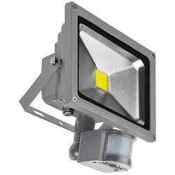 Zewnętrzny projektor FLOOD LIGHTS FL202011 BGR Azzardo ścienna OPRAWA naświetlacz LED 20W z czujnikiem ruchu IP65 jasny szary