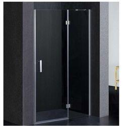 OMNIRES MANHATTAN Drzwi 120cm, chrom, transparentne + powłoka 3M ADP12X LUX