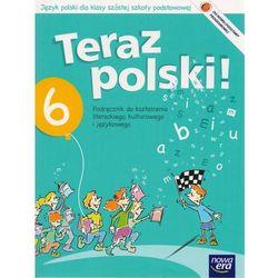 Język polski Teraz polski! SP kl.6 podręcznik (opr. broszurowa)