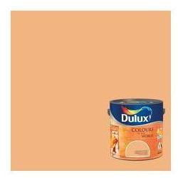Kolory Świata - Buddyjskie kadzidło 5 L Dulux