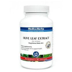Olive leaf Liść oliwny (Olea europaea) 60 kapsułek (500 mg) Liść Oliwny