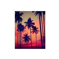 Foto naklejka samoprzylepna 100 x 100 cm - Sylwetka palmy kokosowe na zewnątrz koncepcje