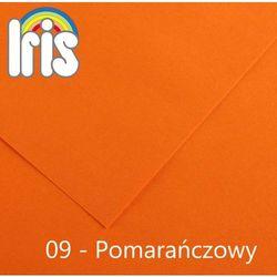 Brystol Canson Iris B1/240g pomarańczowy 25ark.
