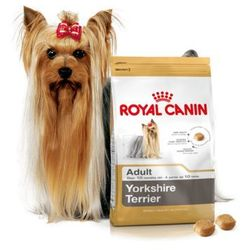 ROYAL CANIN YORKSHIRE TERRIER - 500G + 500G