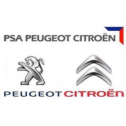 1984C9 PSA Peugeot PARTNER 206 Citroen BERLINGO C2 1.1 WTRYSKIWACZ 0280156324