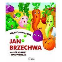 Jan Brzechwa. Na straganie i inne wiersze