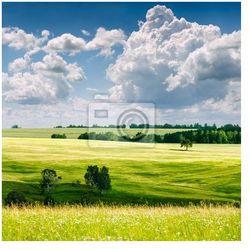 Plakat Piękny krajobraz lato ..