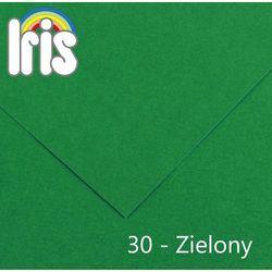 Brystol Canson Iris B1/240g zielony 25ark.