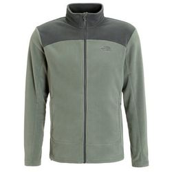 The North Face 100 GLACIER Kurtka z polaru laurel wreath green/spruce green