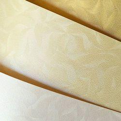 Karton ozdobny Premium Olympia Galeria Papieru, perłowa biel, format A4, opakowanie 20 arkuszy, 203403 - zamówienia, porady i rabaty | (34)366-72-72 | sklep@solokolos.pl |