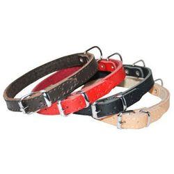 Dingo Obroża skórzana podszyta filcem 2,0x50cm czerwona