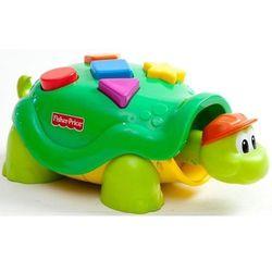Żółwik Tuptuś