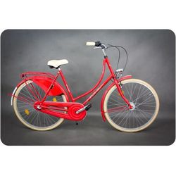 Rower miejski Amsterdam 28 3B czerwony 20
