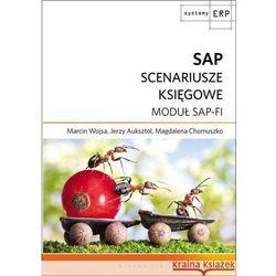 SAP SCNEARIUSZE KSIĘGOWE MODUŁ SAP-FI (opr. kartonowa)