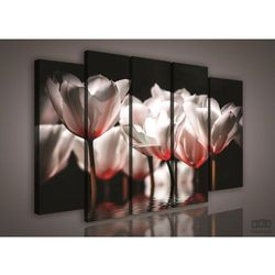 Obraz Białe tulipany PS974S12