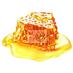 Naklejka słodkie plastry miodu z miodem, odizolowane na białym
